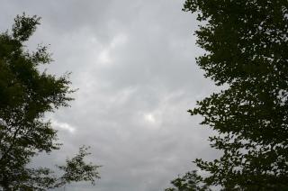120606_11.jpg